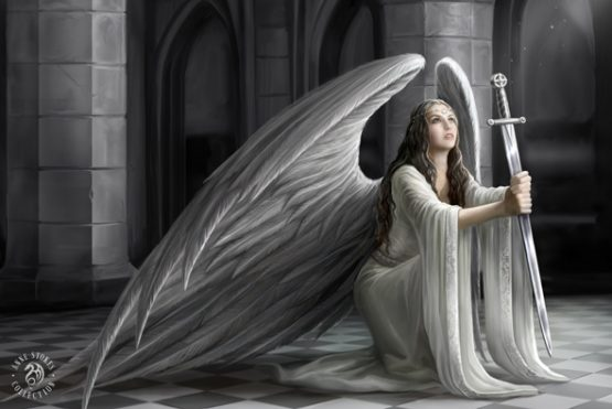 ASCP12 The Blessing Postcard Anne Stokes