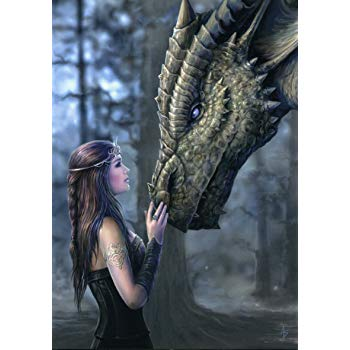 AN46 Once Upon A Time Anne Stokes Greetings Card