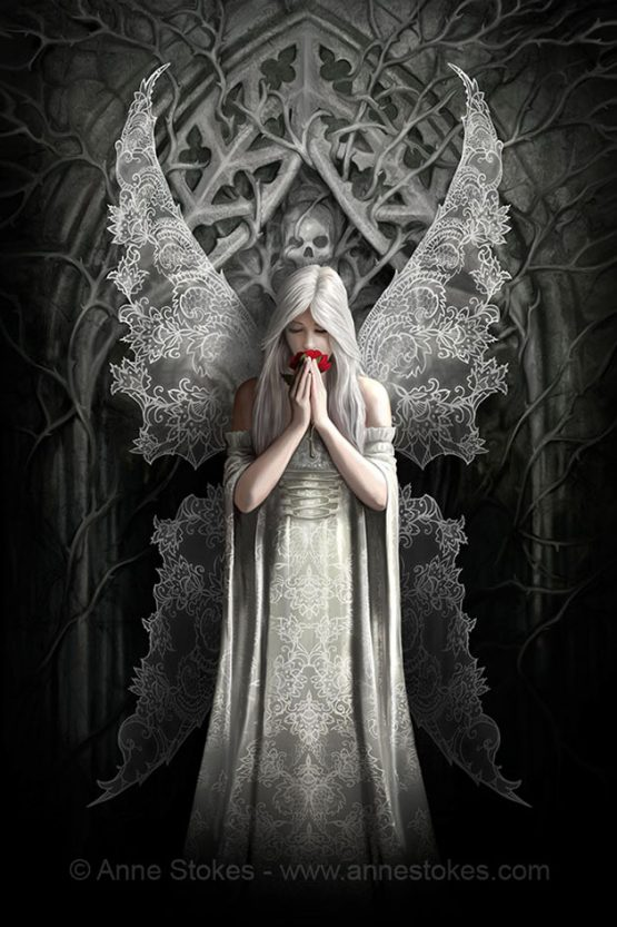 ASCP48 Anne Stokes Only Love Remains