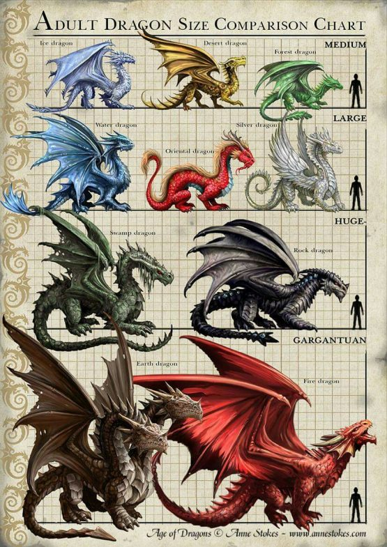 Anne Stokes Dragon Size Comparison Chart