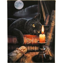WP_22414-19x25cm Witching Hour Canvas Plaque By Lisa Parker