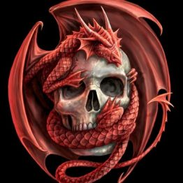 APG03-Dragon and Skull Postcard Anne Stokes