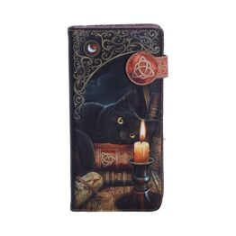 The Witching Hour Purse b3939k8